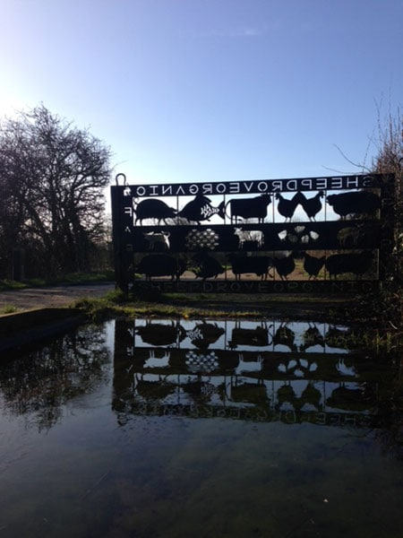 Large Entrance sculpture created from flat steel with carved out animals reflected in a large pond by HB Studios of Wincanton